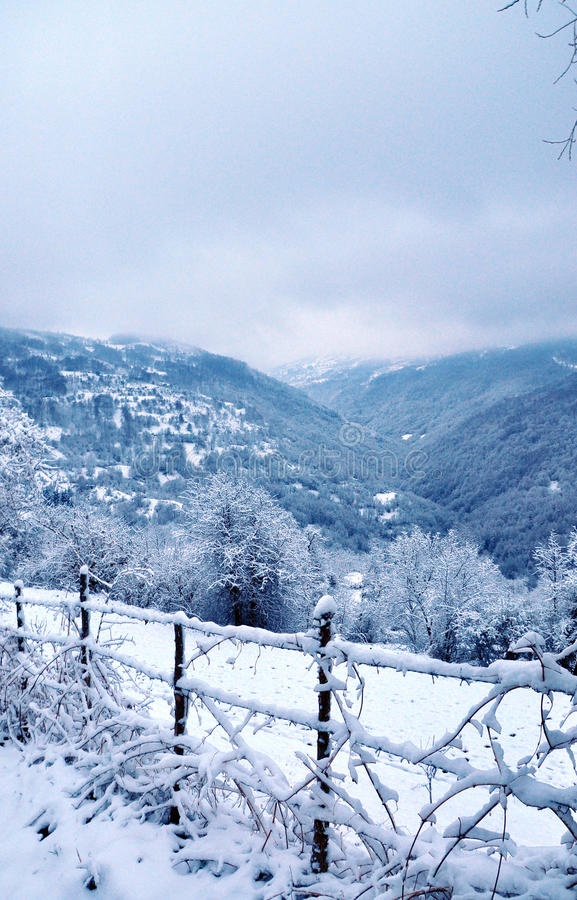 De winterlandschap met sneeuwbomen en omheining stock fotografie