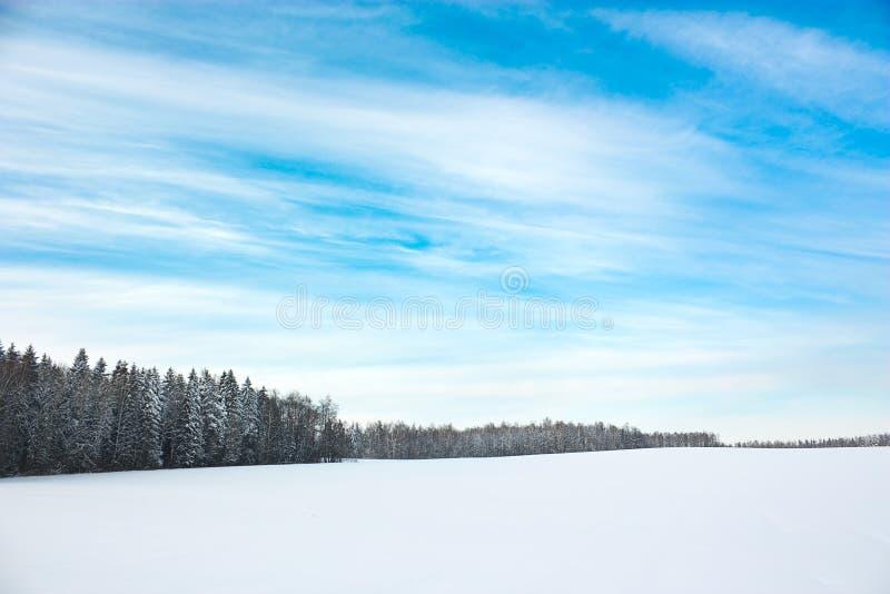 De winterlandschap met Sneeuwgebied en Blauwe Hemel stock afbeelding