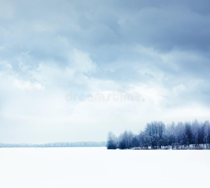 De winterlandschap met Sneeuwgebied en Humeurige Hemel stock foto