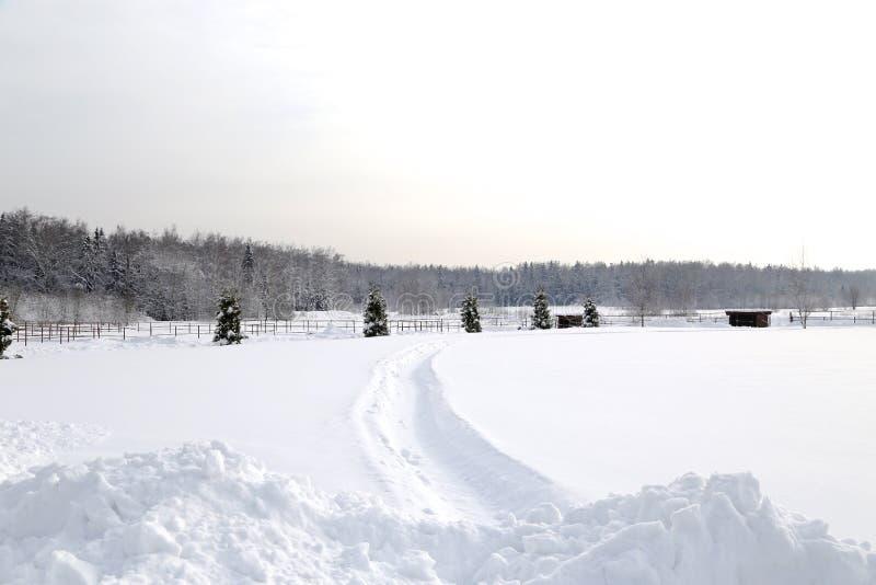 De winterlandschap na sneeuwval in zonnige dag stock fotografie