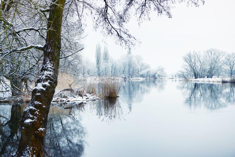 De winterlandschap op Havel-Rivier (Duitsland) stock foto