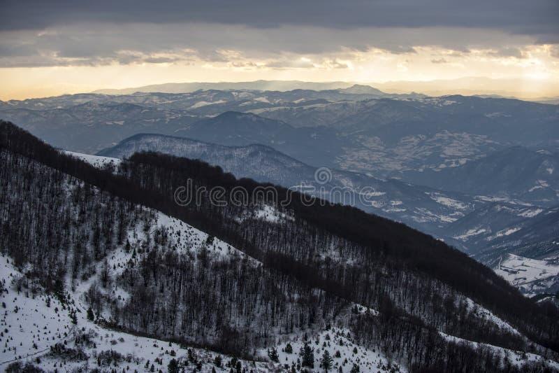 De winterlandschap, sparbos door sneeuw wordt behandeld en bergpieken in de afstand, Mt Kopaonik, Servië royalty-vrije stock afbeelding
