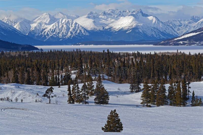 De winterlandschap van bergen, meren en bos stock foto's