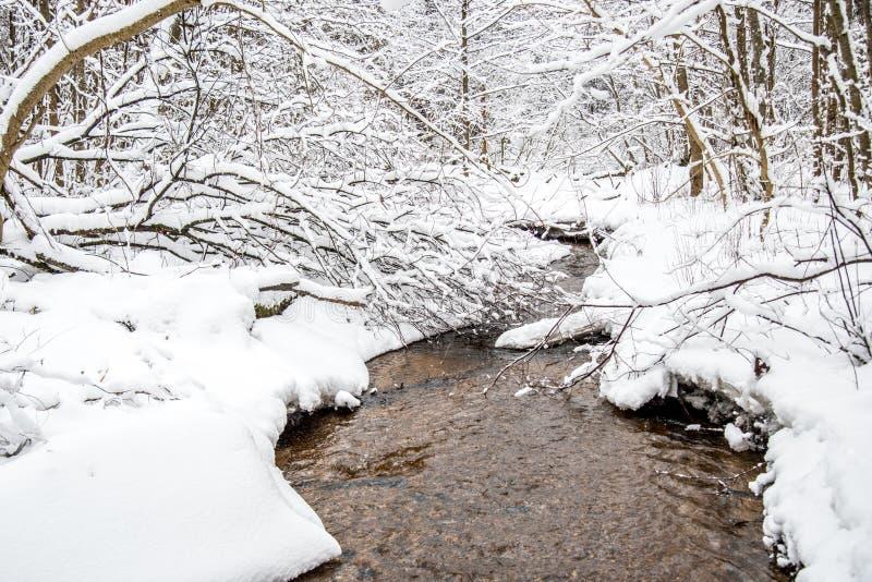 De winterlandschap van kleine bosstroom royalty-vrije stock afbeelding