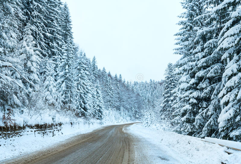 De winterlandweg met sparbos (donkere dag). stock fotografie