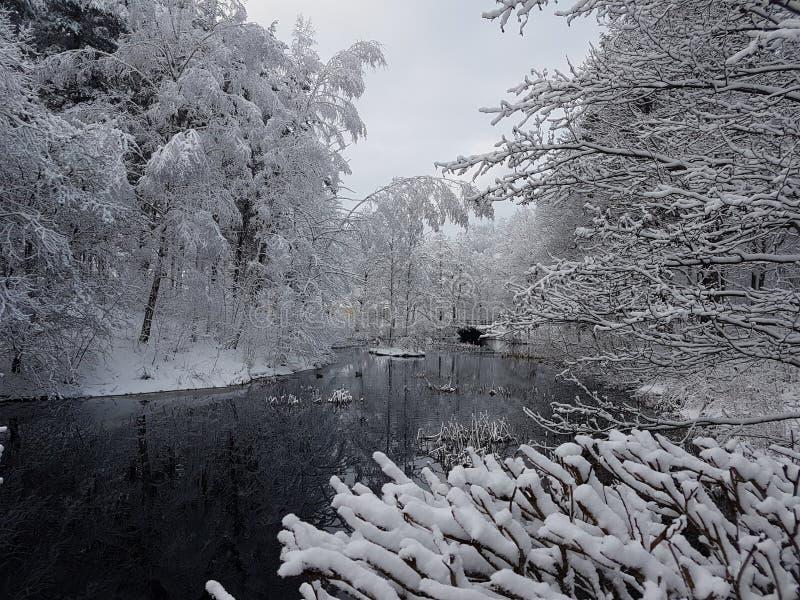 De wintermeer royalty-vrije stock foto's