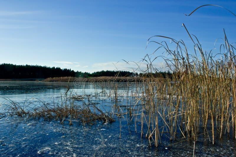 De wintermeer royalty-vrije stock fotografie