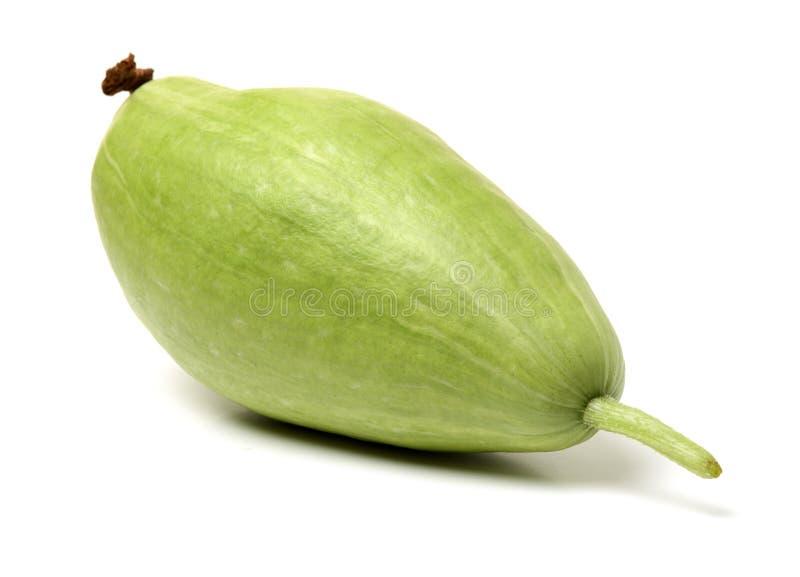 De wintermeloen stock foto