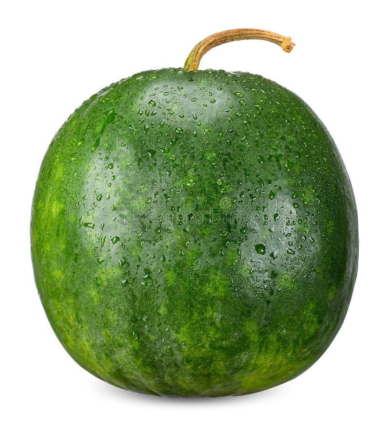 De wintermeloen op witte cllipping weg wordt geïsoleerd die stock foto