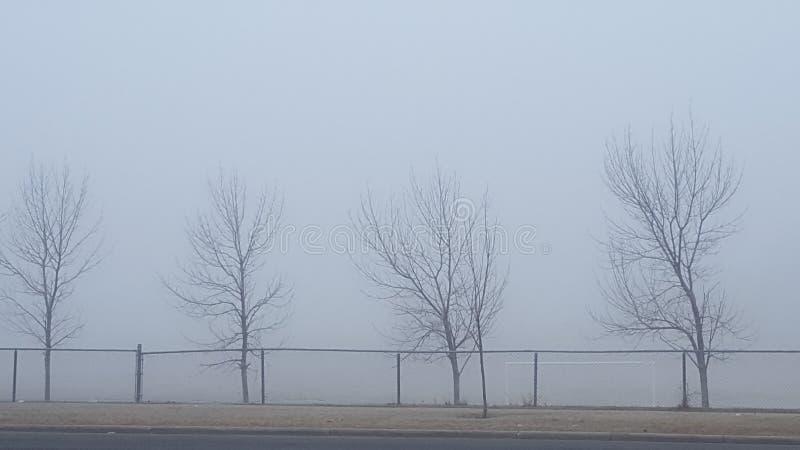 De wintermist stock foto's