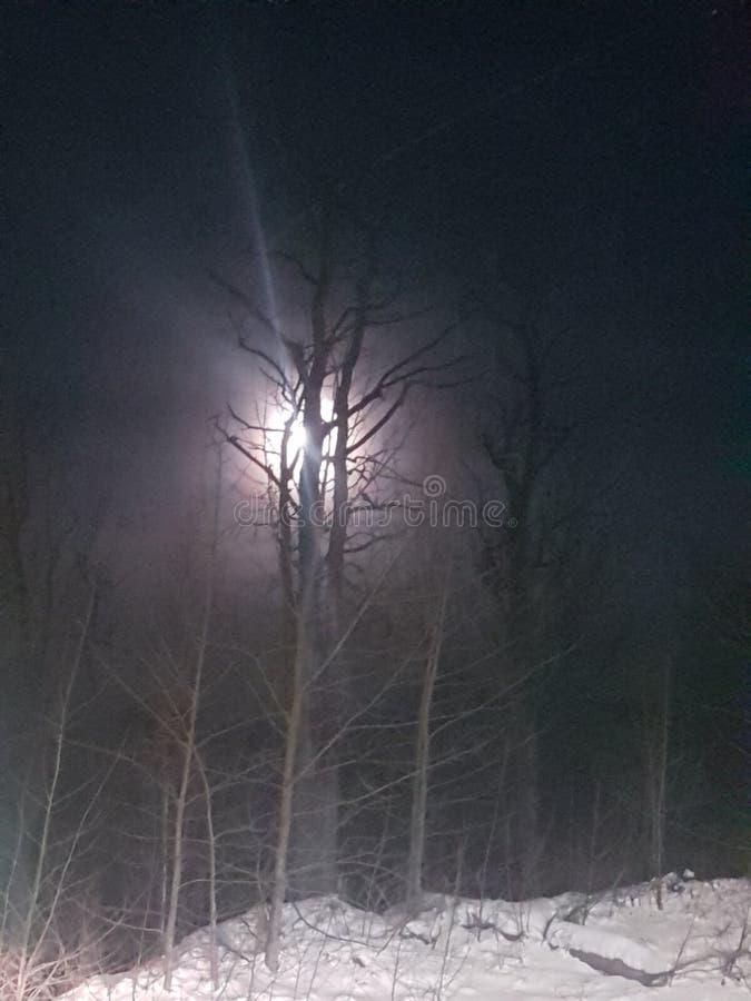 De winternacht in Alaska 2018 royalty-vrije stock foto's
