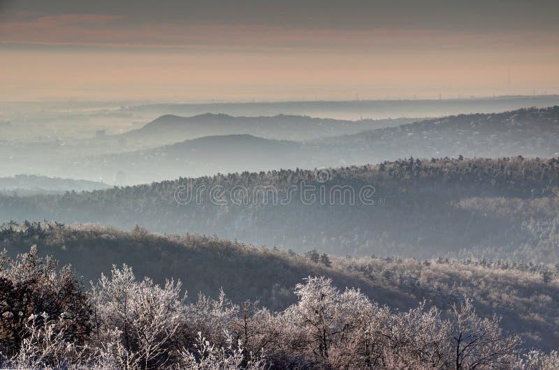 De winterochtend in Buda Hills en bergachtig Boedapest Hongarije stock afbeeldingen