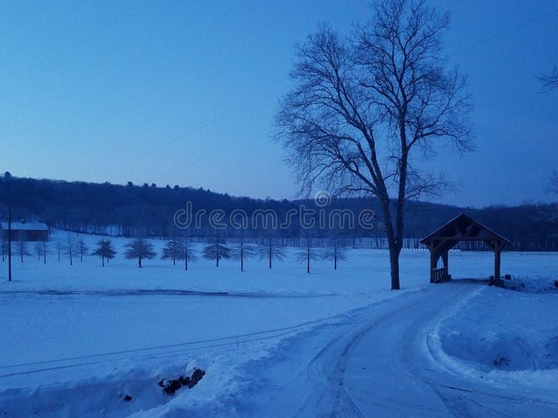 De winterochtend in Skook royalty-vrije stock fotografie