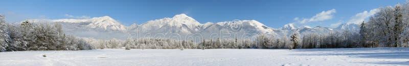 De winterpanorama van bos en bergen royalty-vrije stock afbeeldingen