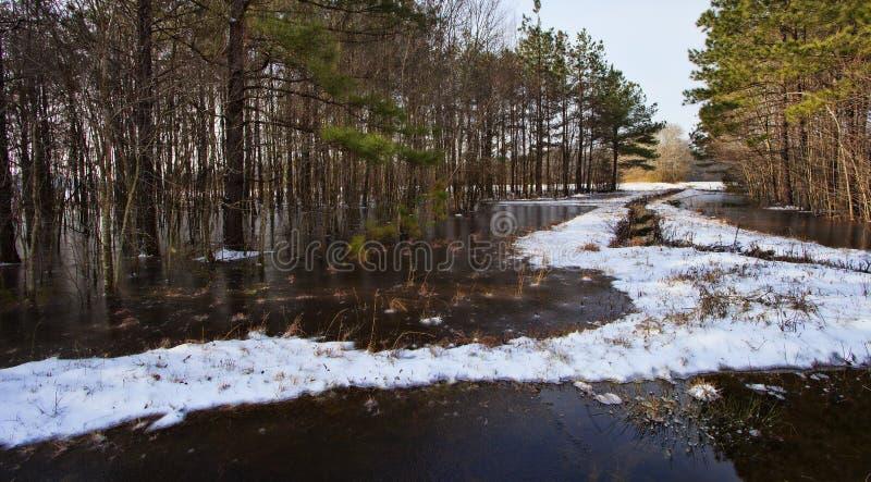 De winterplatteland royalty-vrije stock afbeeldingen