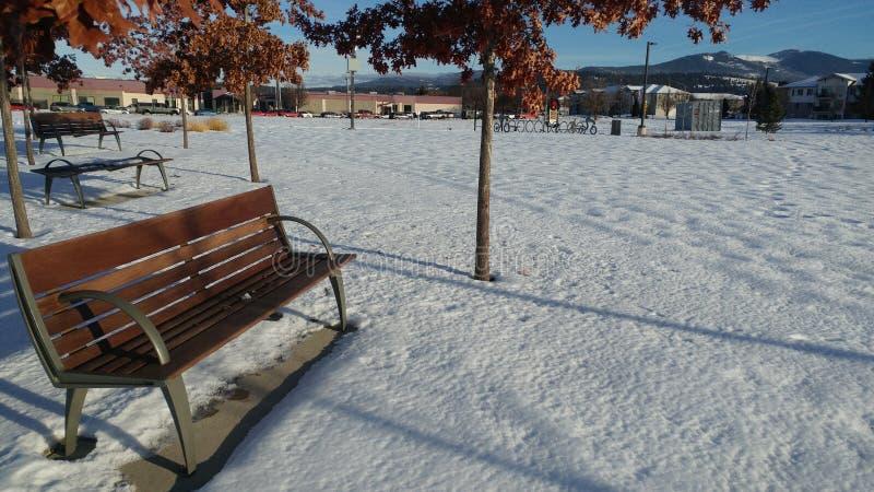 De winterrust bij het park stock afbeelding