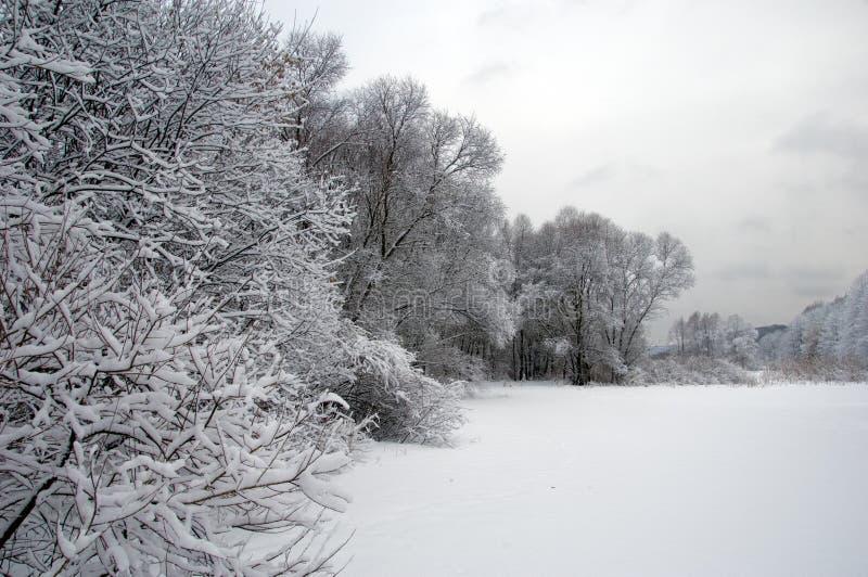 De winterscène royalty-vrije stock fotografie