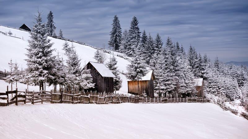De winterscène in de Karpatische bergen, het verre en ruwe milieu stock fotografie