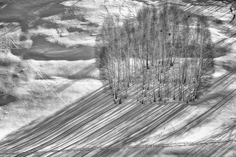 De winterscène in de Karpatische bergen, het verre en ruwe milieu stock afbeelding