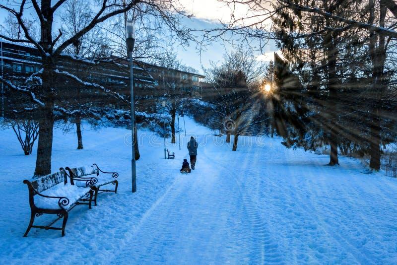 De winterscène met een Vader Riding een Slee voor Zijn Jong geitje in de Ochtendzonneschijn royalty-vrije stock foto