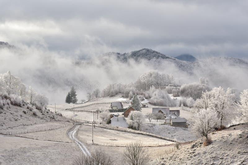 De winterscène in Roemenië, mooi landschap van wilde Karpatische bergen stock foto's