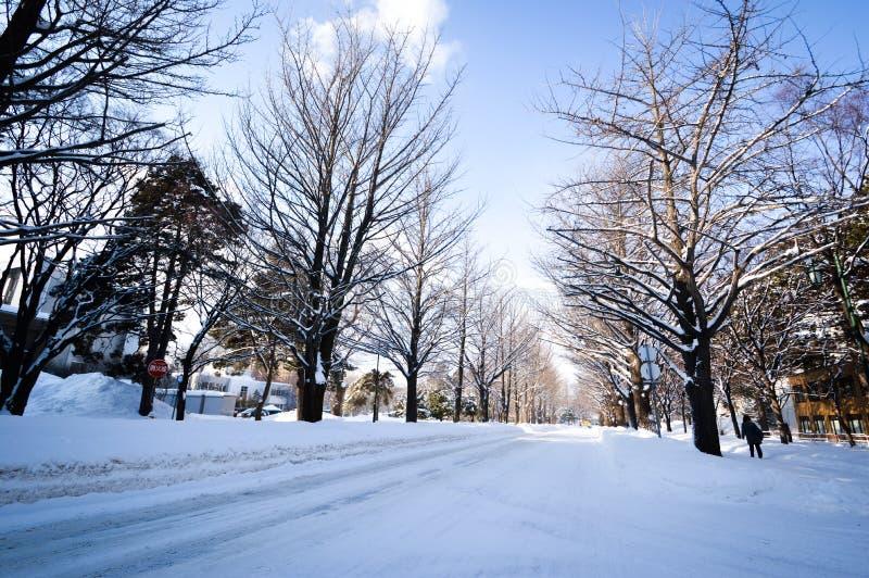 De winterscène Sapporo, Hokkaido, Japan royalty-vrije stock afbeeldingen