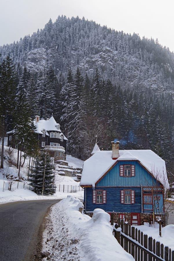 De winterscène, sneeuw behandeld huizen en bos dichtbij weg stock foto's