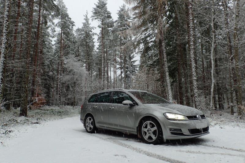 De winterscène van de variant van Volkswagen Golf MK7 in het sneeuwbos van de pijnboomboom stock foto