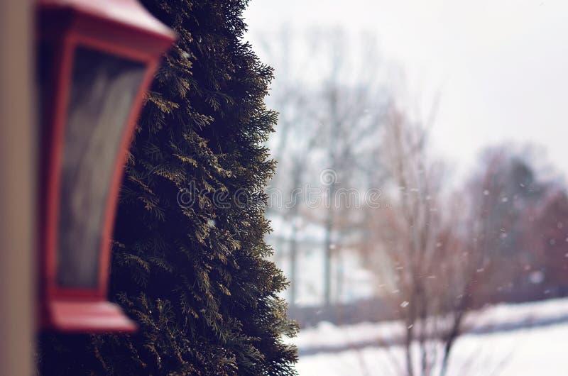 De wintersmening stock foto
