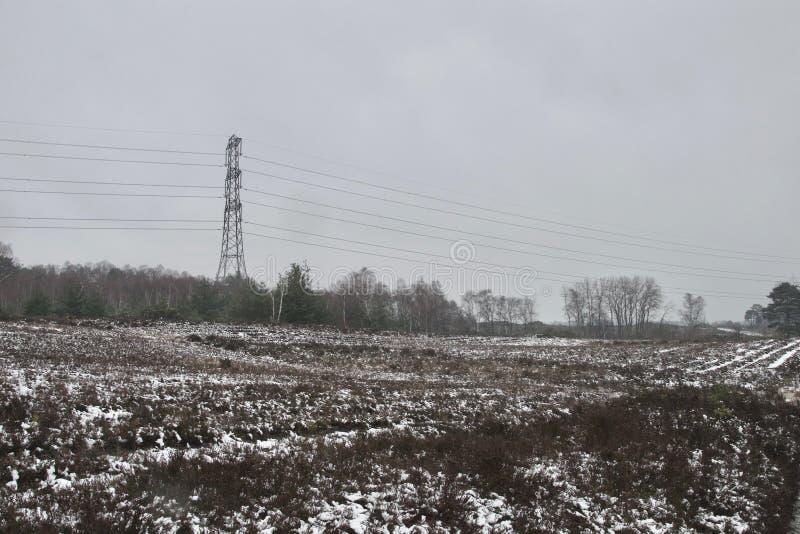 De wintersneeuw op heideheide, naakte bomen in afstand en pylonen/elektriciteitsdraden royalty-vrije stock afbeelding