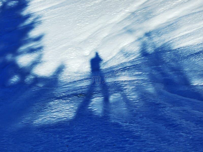 De winterspel van licht en schaduw in de Zwitserse Alpen stock foto's