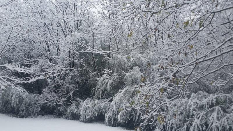 Download De wintersprookjesland stock foto. Afbeelding bestaande uit winter - 107702556