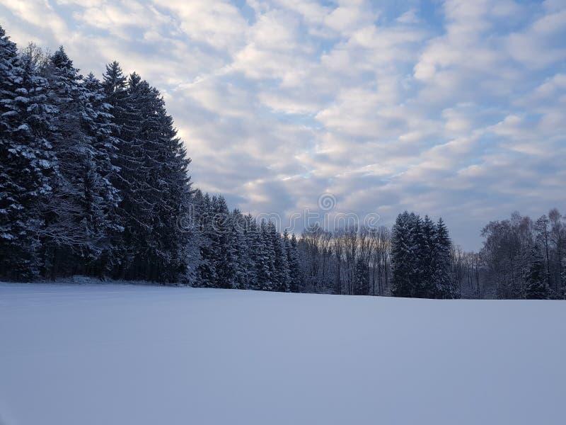 De wintersprookjesland stock afbeelding