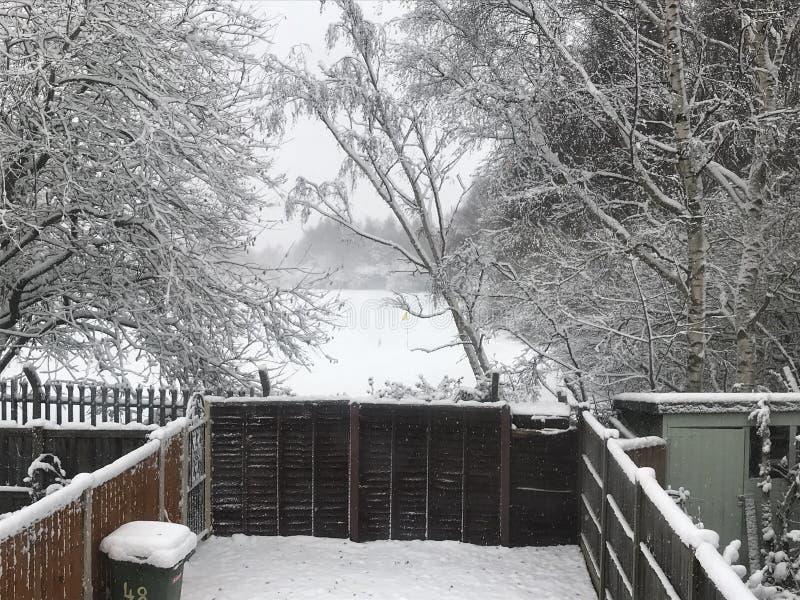 De wintersprookjesland bij Kerstmis royalty-vrije stock afbeeldingen