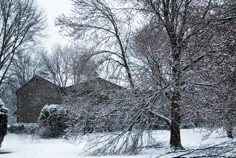 De wintersprookjesland op de lente stock afbeeldingen