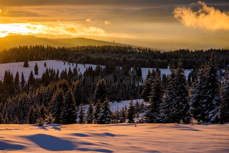 De wintersprookjesland in Roemenië royalty-vrije stock afbeeldingen