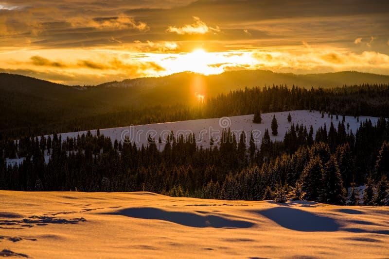 De wintersprookjesland in Roemenië royalty-vrije stock afbeelding