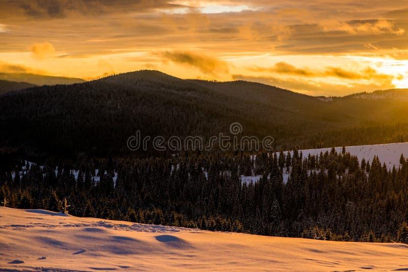 De wintersprookjesland in Roemenië stock fotografie
