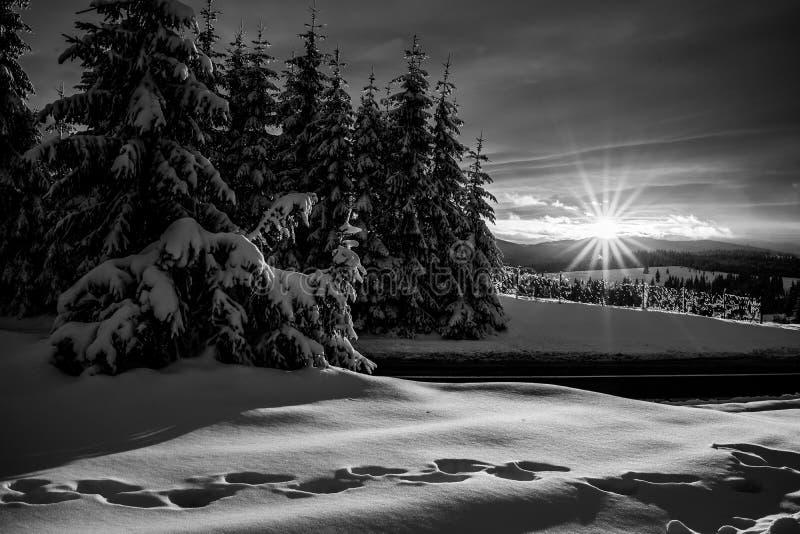 De wintersprookjesland in Roemenië stock afbeeldingen