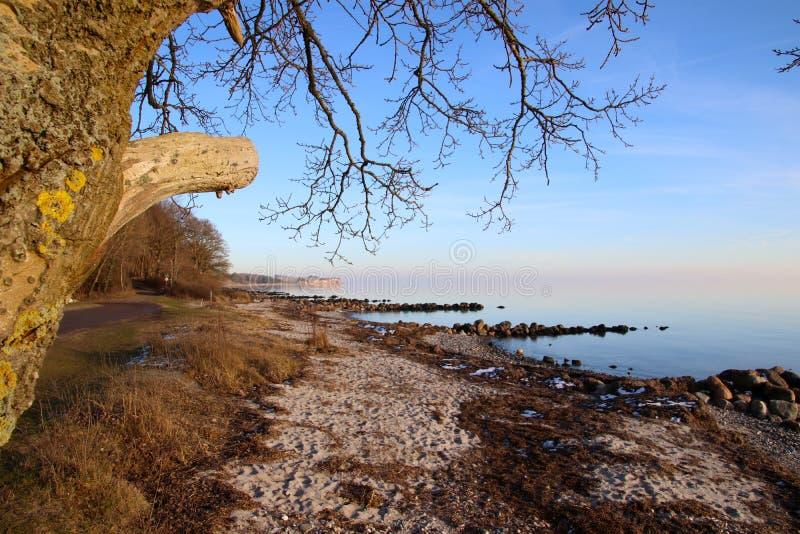 De winterstemming op het strand in Februari royalty-vrije stock afbeeldingen
