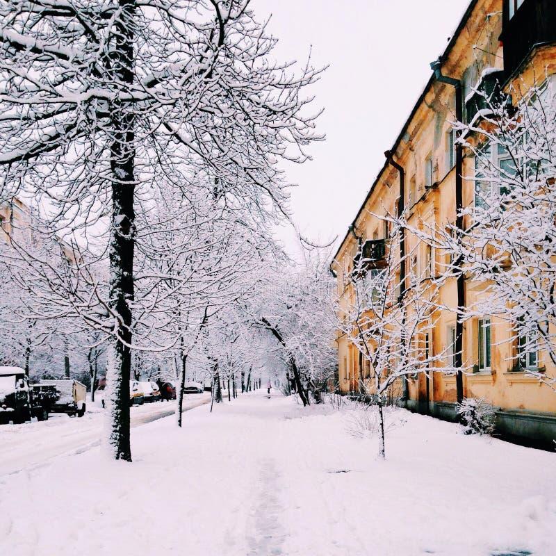 De winterstraat stock foto's