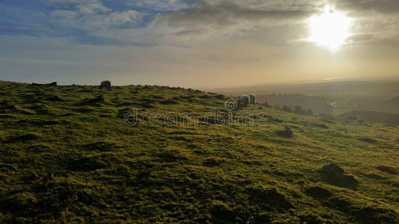 De winterszonsondergang in het westen van dartmoor stock fotografie