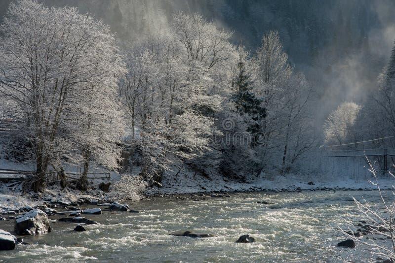 De winterverhaal dichtbij de rivier royalty-vrije stock afbeelding
