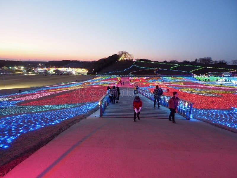 De winterverlichting in Japans Bloempark stock foto's