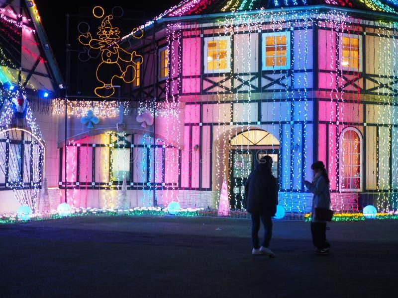 De winterverlichting in Japans Bloempark royalty-vrije stock foto