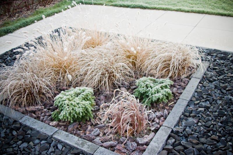 De wintervorst op vooryard decoratief gras royalty-vrije stock afbeelding