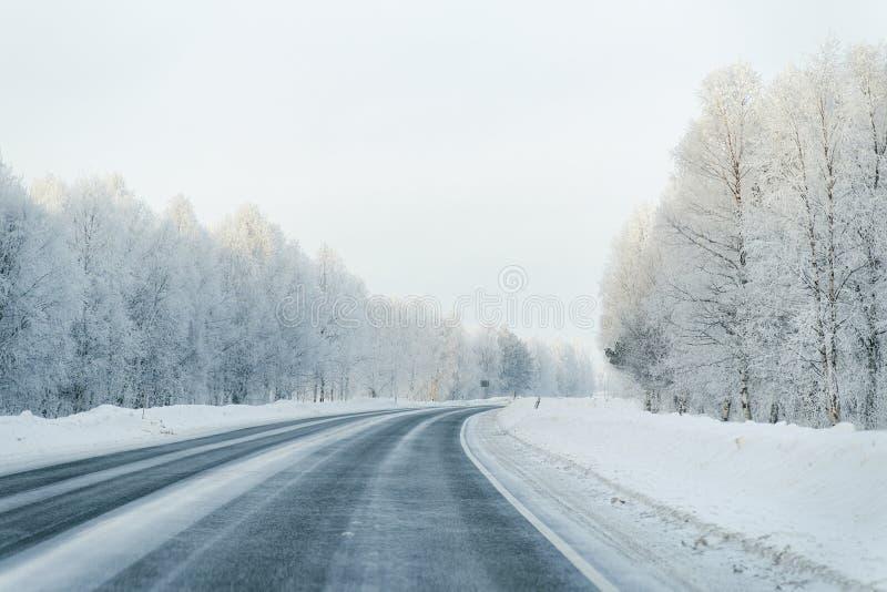 De winterweg en een Sneeuwbos in Koud Finland stock fotografie