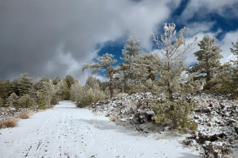 De winterweg in Etna Park, Sicilië royalty-vrije stock foto's
