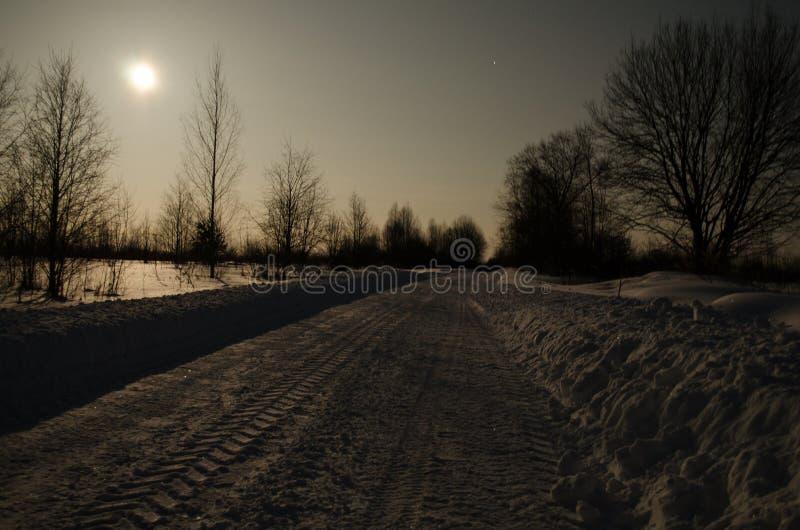 De winterweg in het maanlicht royalty-vrije stock afbeeldingen