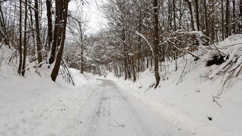 De winterweg van het land met laag van sneeuw wordt behandeld die royalty-vrije stock foto